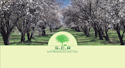 Business Reviews Aggregator: S.C.R Snow Removal and Lawn Care