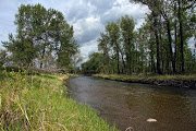 Business Reviews Aggregator: Fish Creek Provincial Park