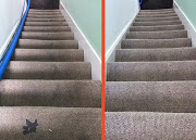 Business Reviews Aggregator: Carpet Cleaning Durham Pros