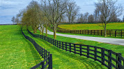 Business Reviews Aggregator: Abby Fence Contracting
