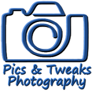 Business Reviews Aggregator: Pics & Tweaks Photography