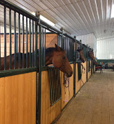 Business Reviews Aggregator: Chinook Winds Equestrian Center