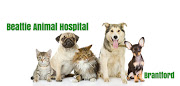 Business Reviews Aggregator: Beattie Animal Hospital